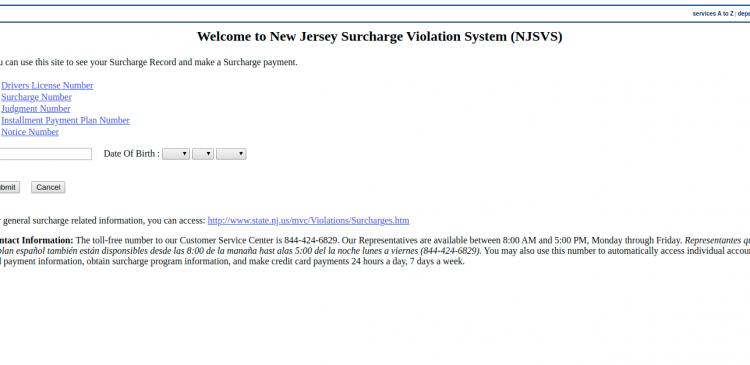 NJSVS - Pay By Web Logo